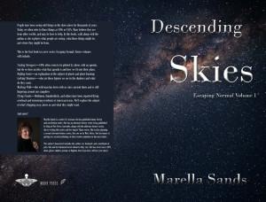 descending skies proto cove1r